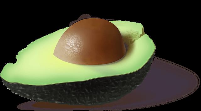Avocado für Avocadoöl